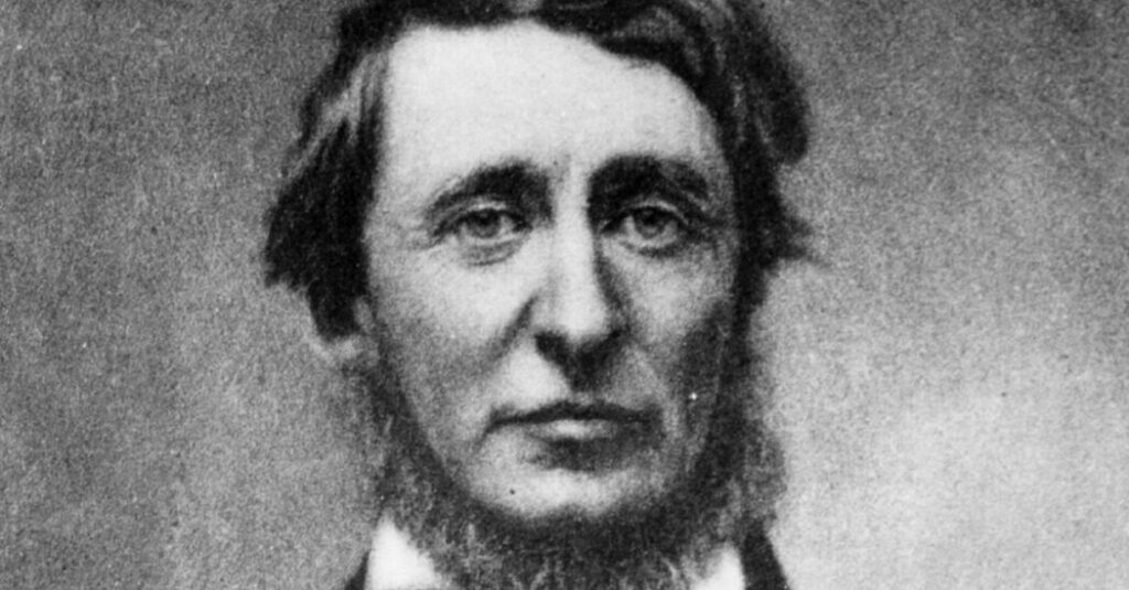 Why Does Thoreau Live On? A Few Famous Writers Offer Answers.